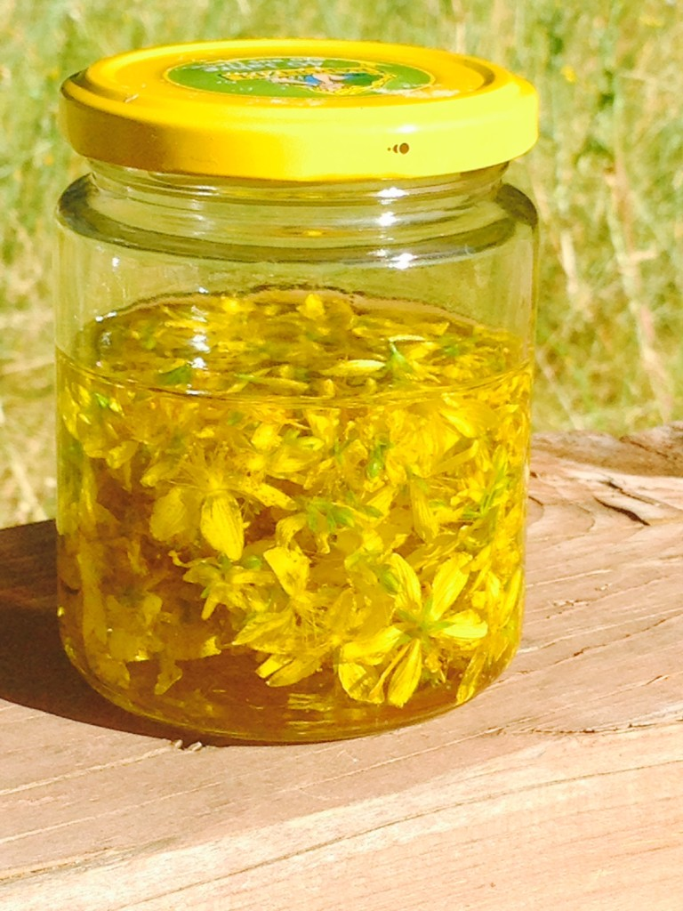 A simple tutorial on how to make herbal infused oils. The example is a St. John's Wort infused oil completely with images of each step in the process.
