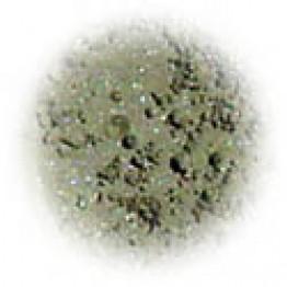 Silver Moss