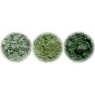Green Shimmer Collection